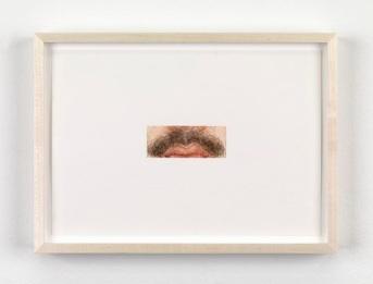 Ellen Altfest Moustache, 2011